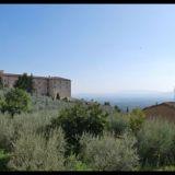 Olivenhain-Kirche-Santa-Chiara-Assisi-Italien-2009-Bild-Barbara-Ludwig