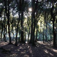 Weiterlesen: Exerzitien in Assisis Umgebung