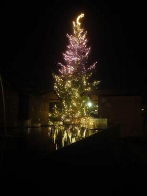 Adventsmarkt-Weihnachtsbaum1